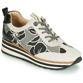 Xαμηλά Sneakers JB Martin 4CASSIE ΣΤΕΛΕΧΟΣ: Δέρμα / ύφασμα & ΕΠΕΝΔΥΣΗ: Δέρμα & ΕΣ. ΣΟΛΑ: Δέρμα & ΕΞ. ΣΟΛΑ: Καουτσούκ