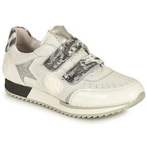 Xαμηλά Sneakers Philippe Morvan ROLL V1 ΣΤΕΛΕΧΟΣ: Δέρμα & ΕΠΕΝΔΥΣΗ: Δέρμα & ΕΣ. ΣΟΛΑ: Δέρμα & ΕΞ. ΣΟΛΑ: Δέρμα