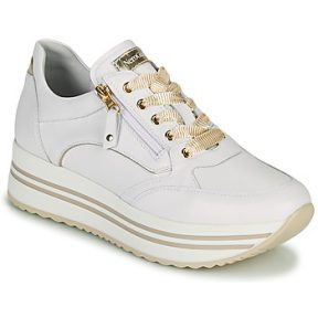 Xαμηλά Sneakers Nero Giardini DAKOTA ΣΤΕΛΕΧΟΣ: Δέρμα & ΕΠΕΝΔΥΣΗ: Δέρμα & ΕΣ. ΣΟΛΑ: Δέρμα & ΕΞ. ΣΟΛΑ: Συνθετικό