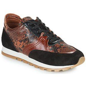 Xαμηλά Sneakers JB Martin GLOIRE ΣΤΕΛΕΧΟΣ: Δέρμα & ΕΠΕΝΔΥΣΗ: Κατσικίσιο δέρμα & ΕΣ. ΣΟΛΑ: Κατσικίσιο δέρμα & ΕΞ. ΣΟΛΑ: Καουτσούκ