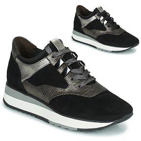 Xαμηλά Sneakers Adige XERUS V1 SOLAR CARBONE ΣΤΕΛΕΧΟΣ: Ύφασμα & ΕΠΕΝΔΥΣΗ: Δέρμα & ΕΣ. ΣΟΛΑ: Δέρμα & ΕΞ. ΣΟΛΑ: Καουτσούκ