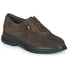 Xαμηλά Sneakers Scholl BRISTOL ZIP ΣΤΕΛΕΧΟΣ: Δέρμα & ΕΠΕΝΔΥΣΗ: Ύφασμα & ΕΣ. ΣΟΛΑ: Δέρμα & ΕΞ. ΣΟΛΑ: Συνθετικό