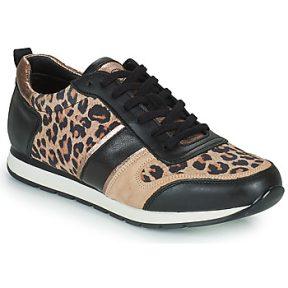 Xαμηλά Sneakers Betty London PARMINE ΣΤΕΛΕΧΟΣ: Δέρμα και συνθετικό & ΕΠΕΝΔΥΣΗ: Συνθετικό & ΕΣ. ΣΟΛΑ: Συνθετικό & ΕΞ. ΣΟΛΑ: Καουτσούκ