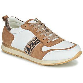 Xαμηλά Sneakers Betty London PERMINE ΣΤΕΛΕΧΟΣ: Δέρμα και συνθετικό & ΕΠΕΝΔΥΣΗ: Συνθετικό & ΕΣ. ΣΟΛΑ: Συνθετικό & ΕΞ. ΣΟΛΑ: Καουτσούκ