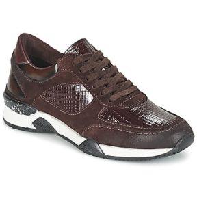Xαμηλά Sneakers Dream in Green FARRICA ΣΤΕΛΕΧΟΣ: Δέρμα & ΕΠΕΝΔΥΣΗ: Συνθετικό ύφασμα & ΕΣ. ΣΟΛΑ: Συνθετικό ύφασμα & ΕΞ. ΣΟΛΑ: Συνθετικό