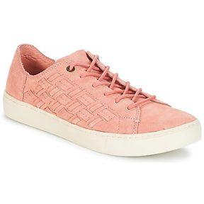 Xαμηλά Sneakers Toms LENOX ΣΤΕΛΕΧΟΣ: Ύφασμα & ΕΠΕΝΔΥΣΗ: Ύφασμα & ΕΣ. ΣΟΛΑ: Ύφασμα & ΕΞ. ΣΟΛΑ: Καουτσούκ